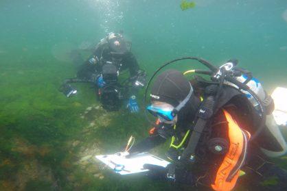 La historia de la Patagonia debajo del agua
